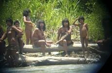 Bộ lạc bí ẩn ở Amazon bất ngờ xuất hiện, dùng cung bắn chết người