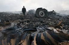 Nga thỏa thuận bí mật với Malaysia về vụ rơi máy bay MH17?