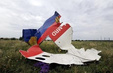 """Hà Lan điều tra """"mảnh tên lửa BUK của Nga"""" ở hiện trường MH17"""
