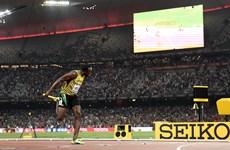 Usain Bolt giành chiếc HCV thứ ba, Trung Quốc gây sốc với HCĐ