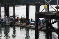Đắm tàu tham quan cá voi tại Canada, ít nhất 4 người chết
