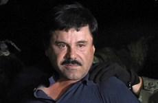 [Video] Hình ảnh đầu tiên về trùm ma túy Chapo sau khi bị bắt