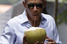 Tổng thống Mỹ Obama uống nước dừa khi đi chùa cổ ở Luang Prabang