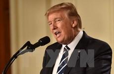 Tòa phúc thẩm Mỹ đóng băng lệnh cấm nhập cảnh của ông Trump