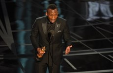 Cập nhật danh sách các hạng mục giải Oscar lần thứ 89