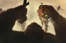 """[Mega Story] """"Kong: Skull Island"""" và những ẩn dụ thú vị về Việt Nam"""