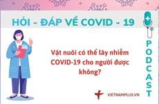 Hỏi đáp COVID-19: Vật nuôi có làm lây lan virus SARS-CoV-2 hay không?
