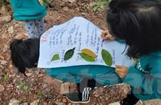 Vụ Thơ Nguyễn tung clip mê tín: Bổ sung chế tài mạnh để bảo vệ con trẻ