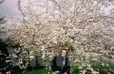 Tìm về miền trong trẻo qua tác phẩm của nhà văn Trần Hoài Dương