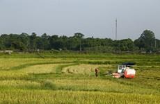 Phát triển nông thôn mới theo hướng bền vững, kết hợp chuyển đổi số