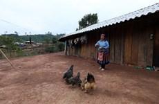 Giảm nghèo bền vững: Quan tâm đến người nghèo mới nổi do COVID-19