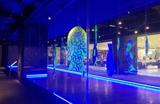 Davines Art lần 8: 'Biển sống' truyền đi thông điệp bảo vệ đại dương