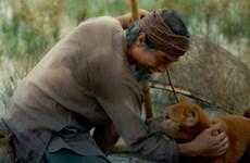 Nhà phê bình Phạm Xuân Nguyên: Tôi vẫn muốn được xem phim 'Cậu Vàng'