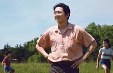 Chiếu sớm phim Oscar 'Minari,' cậu bé phù thủy Harry Potter trở lại