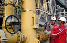 Việt Nam có thể phải nhập khẩu 58,5% năng lượng vào năm 2035