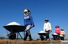 Không áp dụng hạn ngạch nhập khẩu muối, trứng gia cầm có xuất xứ ASEAN