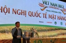 Gạo Việt Nam cần xây dựng chỉ dẫn địa lý để nâng giá trị