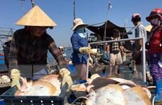 Bài 5: Ngành thủy sản vươn ra đại dương để phát triển kinh tế biển