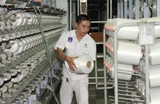 Xơ sợi Đình Vũ tăng công suất sản xuất sợi DTY lên 900 tấn mỗi tháng