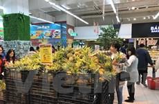 'FTA mở ra điều kiện để hàng hóa Việt Nam đi vào thị trường cao cấp'