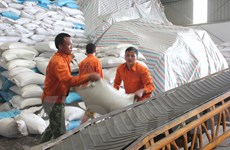 Thương mại toàn cầu suy giảm, xuất khẩu của Việt Nam vẫn tăng hơn 8%