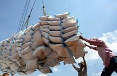 Xuất khẩu gạo song vẫn bảo đảm tuyệt đối an ninh lương thực quốc gia