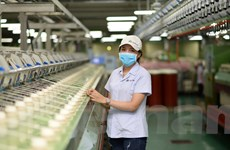Cơ hội đẩy mạnh xuất khẩu các mặt hàng chủ lực khi EVFTA có hiệu lực