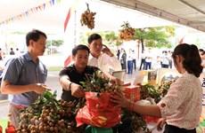 Hơn 70 nhà nhập khẩu giao thương tiêu thụ sản phẩm nhãn Việt Nam
