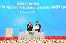 ''Cùng với CPTPP, RCEP mang lại 2 mô hình kinh tế rất lý tưởng''