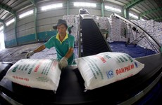 Xuất khẩu không phải là nguyên nhân khiến phân bón trong nước đội giá