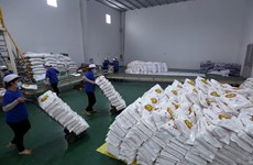 Kiến nghị mở 'luồng xanh' cho vận tải đường thủy tiêu thụ lúa gạo