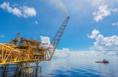 Đầu tư dự án dầu khí vướng các 'rào cản' về quy trình, thủ tục