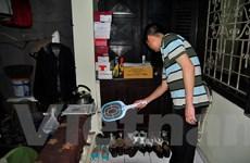 16.000 người dân tại Hà Nội khốn khổ sống chung với... muỗi