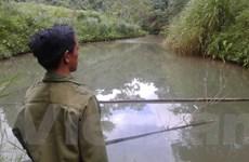 """[Video] Toàn cảnh vụ xả thải """"bức tử"""" suối nguồn đổ ra sông Đà"""