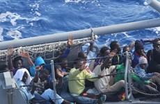 """""""Al-Qaeda trà trộn vào dòng người di cư sang châu Âu"""""""