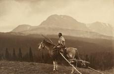 Người dân bản địa của Mỹ có nguồn gốc từ Siberia