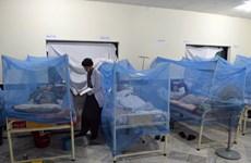 Số ca nhiễm sốt xuất huyết tại Malaysia tăng vọt