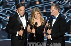 Đồ họa về các hạng mục thắng cuộc tại Oscar 2014