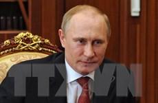 Tổng thống Putin sẽ có chuyến thăm chính thức Trung Quốc