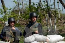Chiến binh ly khai Ukraine tuyên bố bắt giữ quan sát viên OSCE