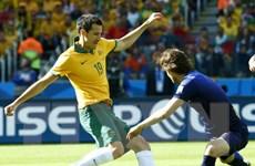 Đội tuyển Australia sẽ cải tổ lối chơi theo hướng tấn công