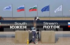 """Bulgaria quyết tâm tham gia dự án """"Dòng chảy phương Nam"""""""