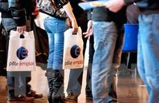 Hơn 70 triệu thanh niên trên thế giới không thể tìm được việc làm