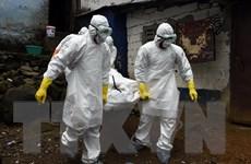 Mỹ kết thúc sứ mệnh hỗ trợ dập dịch Ebola tại Liberia