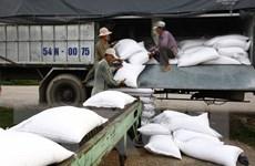 Đã hoàn thành 71% kế hoạch thu mua tạm trữ 1 triệu tấn quy gạo