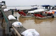 Nhiều doanh nghiệp đã hoàn thành chỉ tiêu thu mua tạm trữ lúa gạo