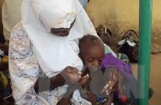 Hơn 800.000 trẻ em Nigeria khốn khổ vì nhóm Hồi giáo Boko Haram