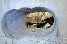 Công bố hình ảnh đầu tiên về hiện trường vụ trộm đá quý ở London