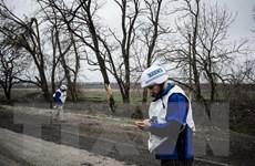 Nhóm tiếp xúc về Ukraine nhất trí sẽ tiếp tục việc rút vũ khí