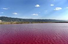 [Photo] Hồ nước mặn ở Trung Quốc bất ngờ chuyển sang màu đỏ